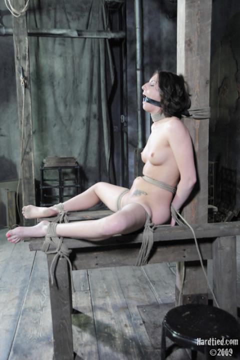 Gallery005- Hardtied